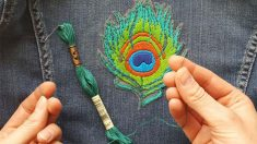 Professional-Outfit-Improvement-With-Embroidery
